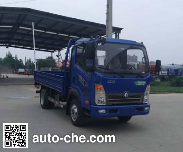 Sinotruk CDW Wangpai cargo truck CDW1040HA1P5