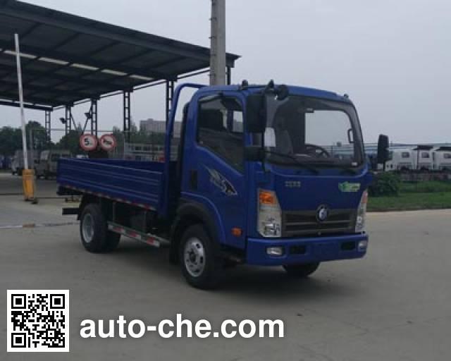 Sinotruk CDW Wangpai cargo truck CDW1042HA1P5